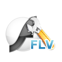 Customize web FLV player
